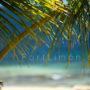 playa_bonita_2083